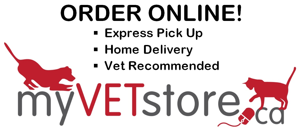 Dissette Animal Hospital - Bradford veterinarian proudly